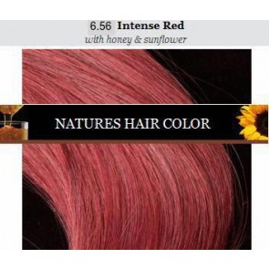 Apivita nature's hair color 6.56